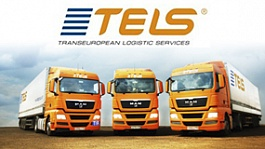 Telsgroup.ru